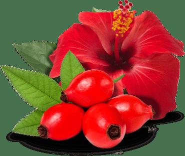 Šipak s hibiskusom