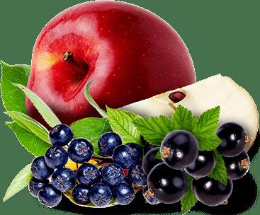 Aronija jabuka crni ribiz