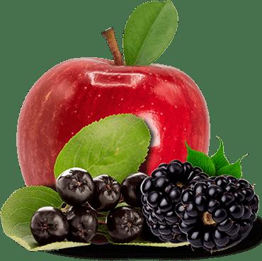 Aronia, Apple & Black currant