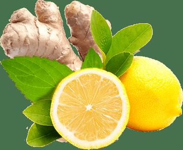 Đumbir i limun